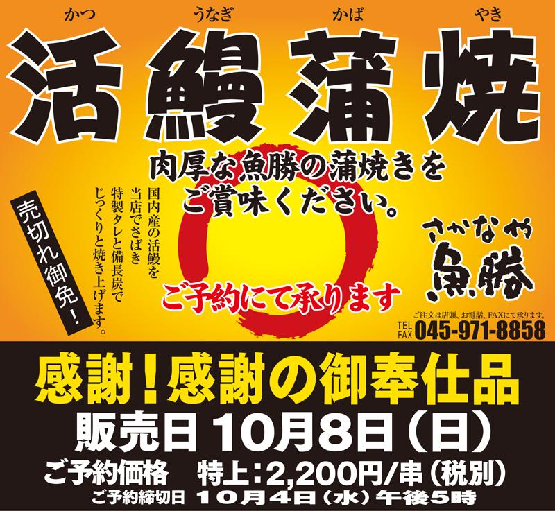 さかなや魚勝 横浜市青葉区藤ヶ丘 鮮度抜群の美味しい魚 20171008活鰻蒲焼橋本店